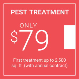 First Pest Treatment coupon